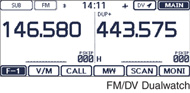 FM/DV Dualwatch